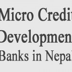 Name list of All the 'Class D' Micro Credit Development Banks in Nepal