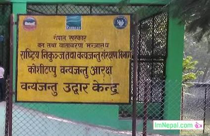 Koshi Tappu Animal koshi tappu wildlife reserve Nepal