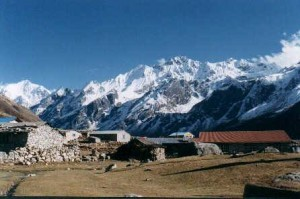 10 Things to Do and Place to Visit in Langtang National Park in Nepal – Park of Unique Flora and Fauna