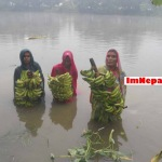 Pictures, Photos, Images of Carrying Bananas in Holy Festival Chhath Puja