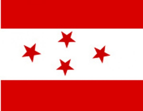 Nepali Congress Election Candidates in CA Election 2013