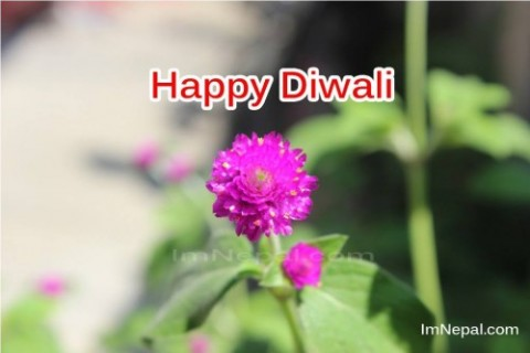 Simple Diwali Greeting Cards for Your Friends