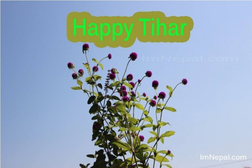 happy tihar wishing ecards