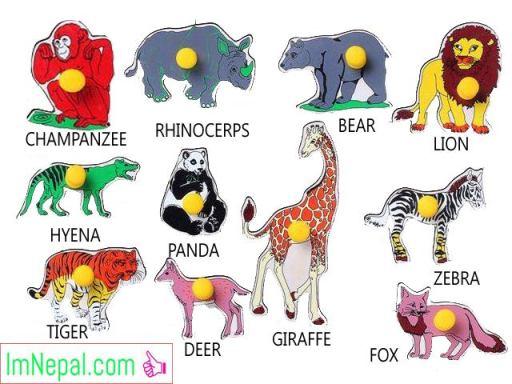 Names of Animals in Nepali English Language