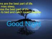good night message for girlfriend in english