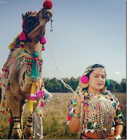 Most Traditional Dress Photos of 15 Beautiful Nepali Actresses