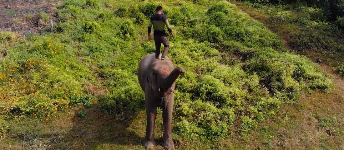 Elephant Riding on Chitwan National Park Nepal