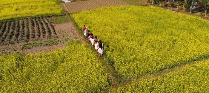 Tharu Ladies in Sauraha, Chitwan, Nepal