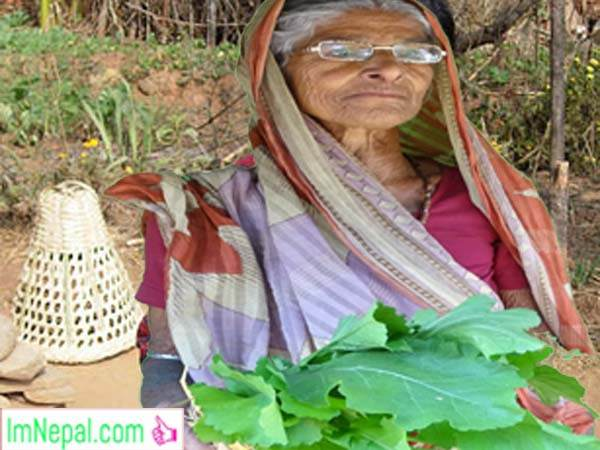 a old aged Nepali woman with green grocery