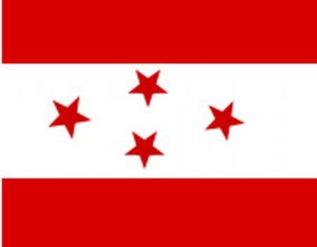 Nepali Congress Party Flag