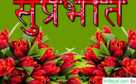 Good Morning Wishes Messages Sms In Nepali Images Quotes Cards