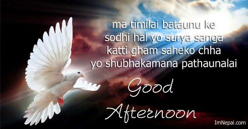 gud after noon sms, messages, wishes, quotes, shayari in Nepalese language
