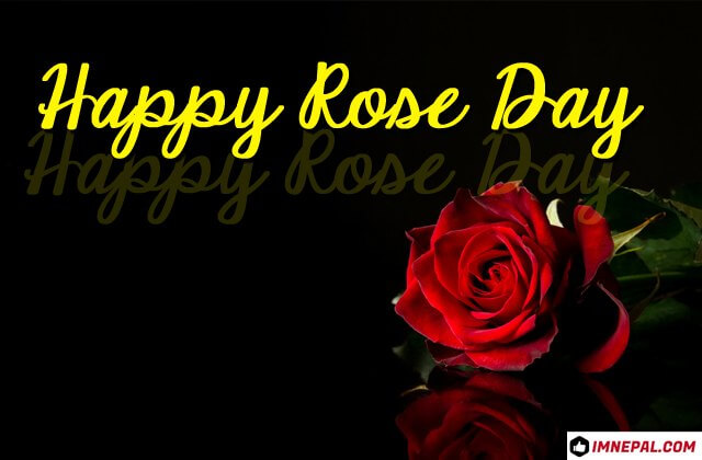 Happy Rose Day Images Greetings Cards