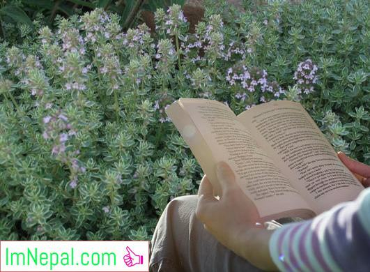reading books in the field