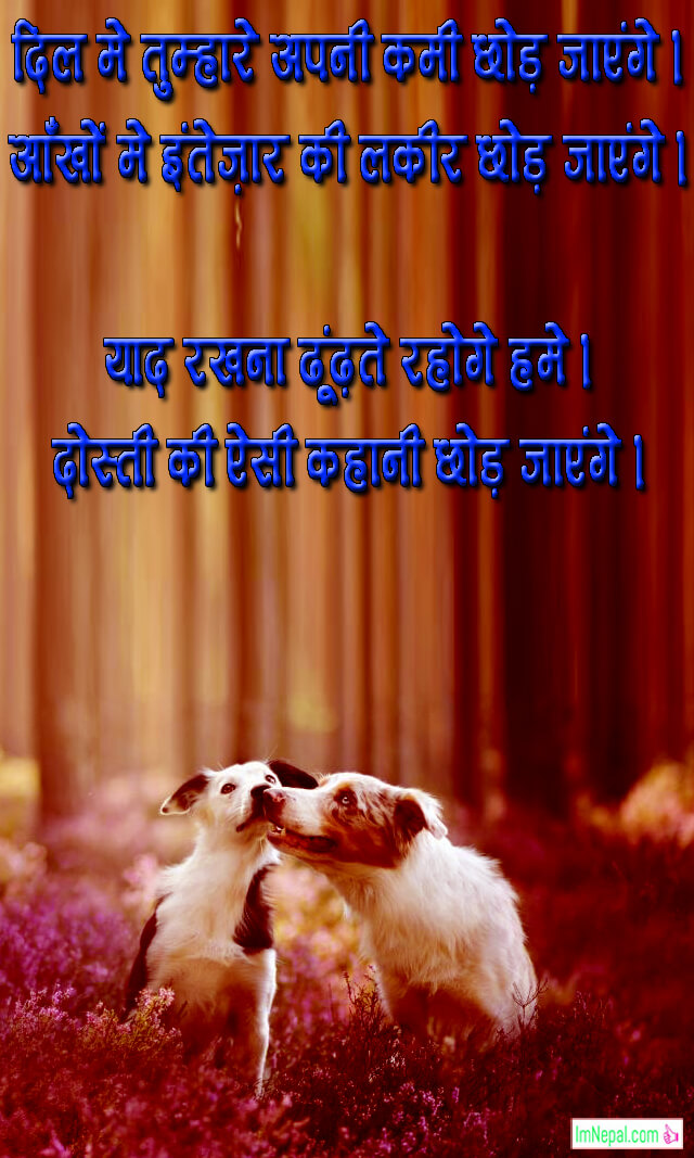 hindi friendship shayari dost shayri sms text status friend images pictures wallpapers wishes messages quotes card