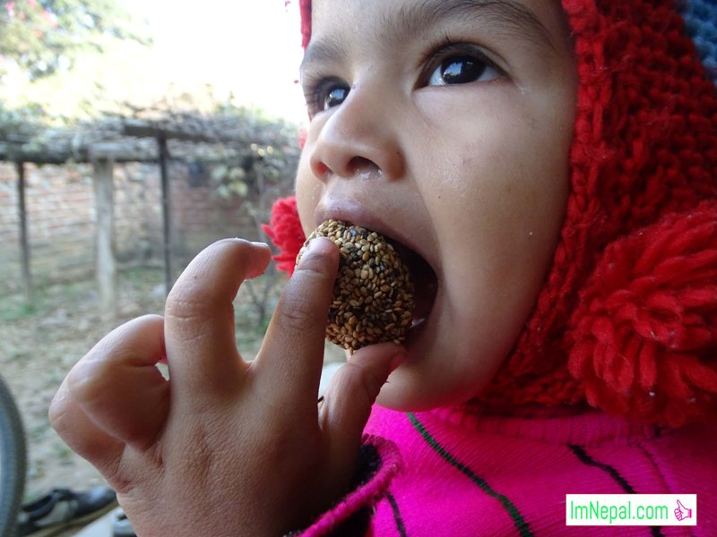 Maghe Maghi sankranti laddoo Til Ko Laddo Chiura ko laddoo Murahi ko laddoo festival hindu Nepal Images a little girl kid is eating