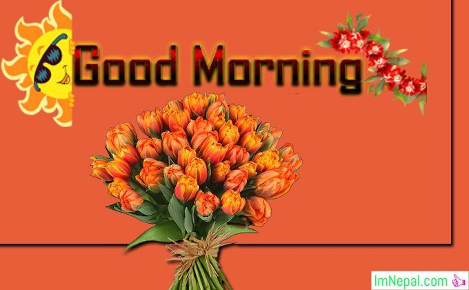 Good Morning Messages Wishes Status For Facebook Friends