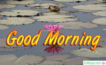 Good Morning Messages Wishes Status For Facebook Friends Family