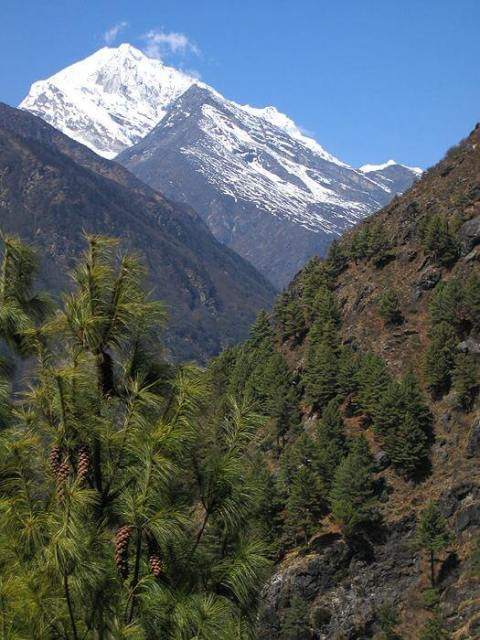 Sagarmatha National Park Nepal