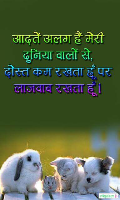 Hindi friendship shayari dost Dosti shayri sms text status friends images pictures hd wallpaper wishes messages quotes pics Quotes on Friends Forever in Hindi