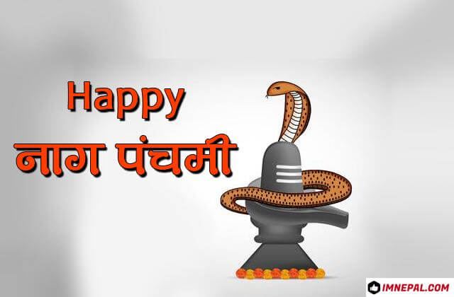 Happy Nag Panchami Greetings Cards Image Wishes Pictures Wallpapers Photos Pics Messages Quotes Snakes Day