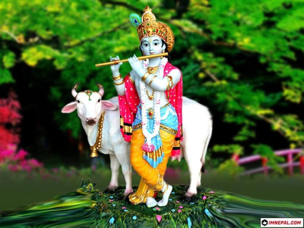 Lord Krishna Images 50 Hd Wallpapers With Facts To Download Free