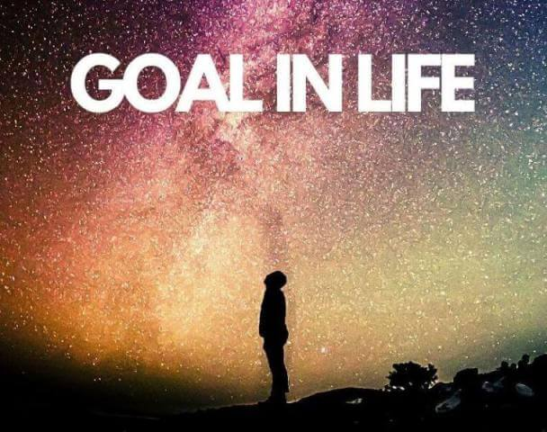 Essay on Goal in Life