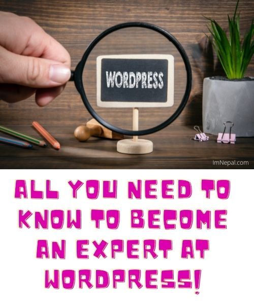 All You Need To Know To Become An Expert At WordPress